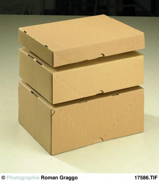 Stülpdeckelkarton DIN A4 310x230x103 A4 1.02 E-Welle aus Wellpappe braun